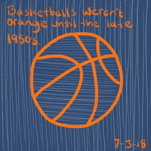 81/100 basketball